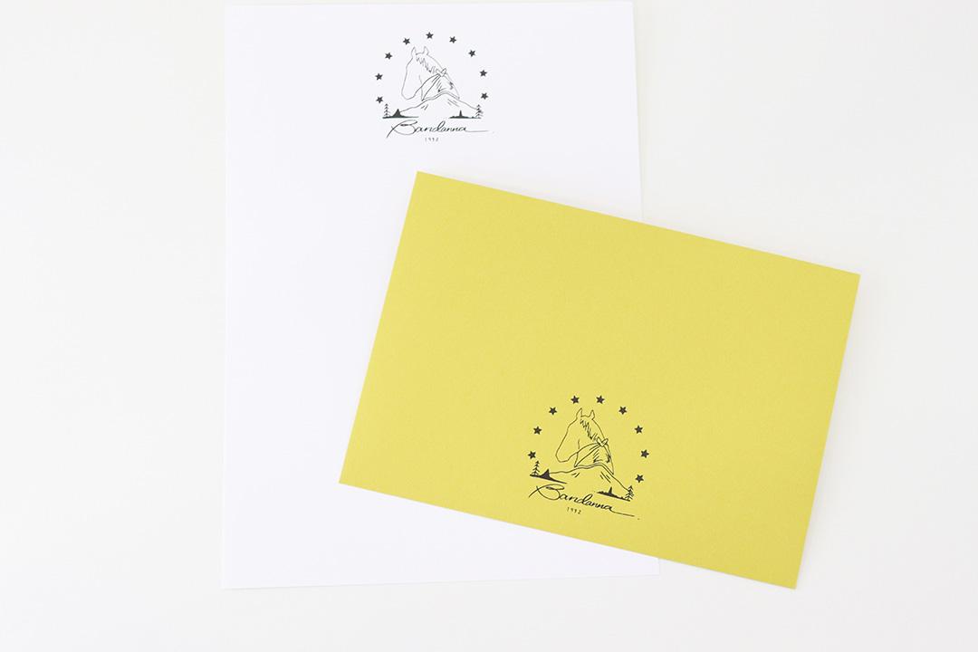 封筒の色:洋2カマス(うぐいす封筒)・正方形160カマス(ライナーグレー封筒)・スノーホワイト便箋<br>箔:顔料つや消し黒箔・チャコールグレー箔